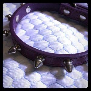 Dog collar leather